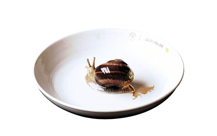 Hella Jongerius Plate with snail